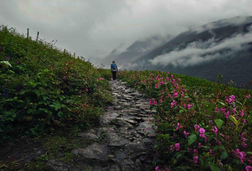 valley-of-flowers-uttarakhand