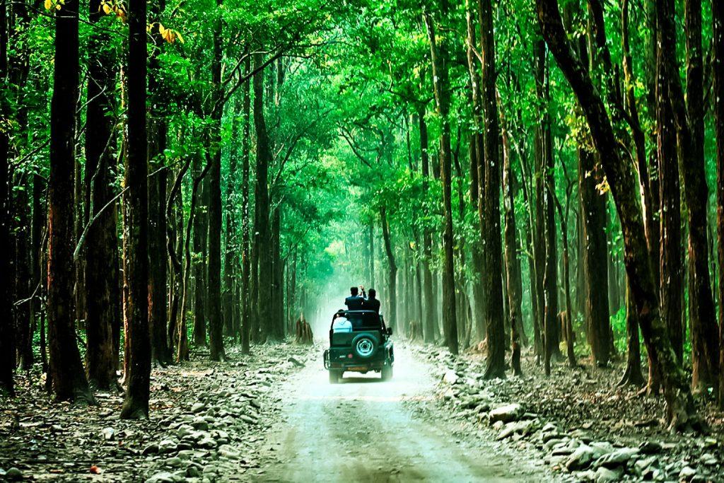 sitabani-zone-jim-corbett-national-park
