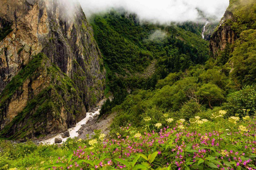 valley-of-flower